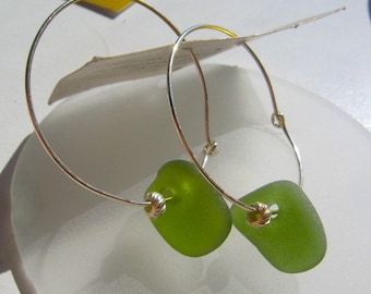 Rare moss Green Lake Superior Beach Glass Hoop Dangle Earrings
