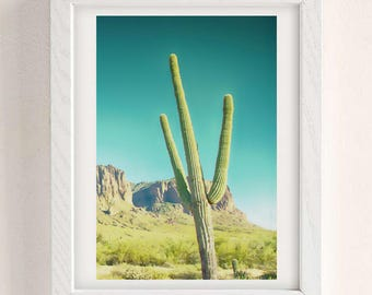 Cactus Printable Print, Arizona Rocks, Cactus photo, Arizona Desert print, Southwestern print, Cactus poster, Cactus decor,California Desert