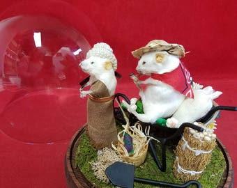 Taxidermy Mouse Mice Vegtable Garden Scene-wheelbarrow-Anthropomorphic-Diorama
