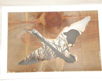 Framed Flying Duck Cutout Wall Art