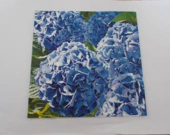 hydrangea blue 33 cm paper towel