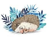 Hedgehog // Signed A3 print