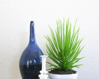 Potted Ornamental Grass