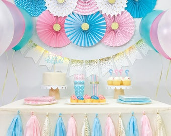 gender reveal baby shower decorations boy and girl twins birthday party decorations pink and blue party decorations party kit