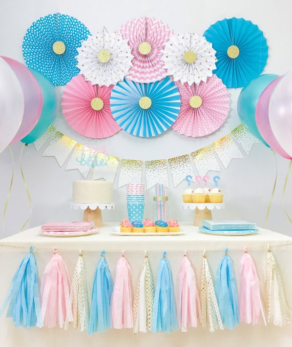 Gender reveal baby shower decorations boy and girl twins for Baby shower decoration twins