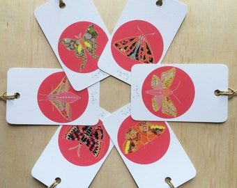 Gift Tags Winter Moth Pink x6