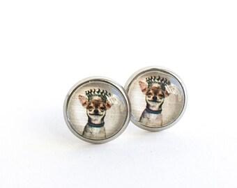 Bijoux chihuahua, Boucles d'oreilles chihuahua, Clous d'oreilles 10mm en acier inoxydable, Clous d'oreilles, Boucles d'oreilles femme fille