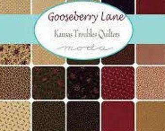 Gooseberry Lane by Kansas Troubles