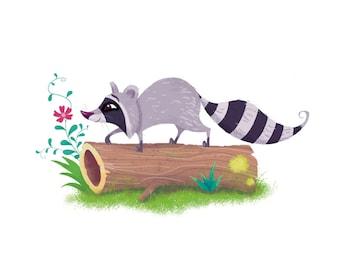 Raccoon, Art Print from Original Illustration, Illustration Print, Wall Art