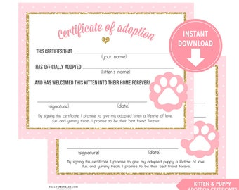 Pink vintage horse pony party adoption certificate printable pink and gold glitter kitten adoption certificates girl kitten cat kitty party kitten party yadclub