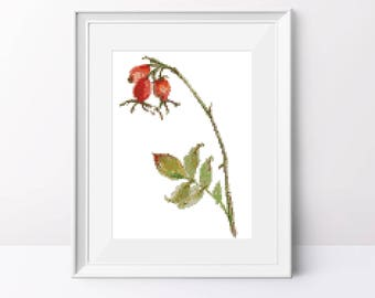 Rosehip berries cross stitch pattern Rosehip berries pdf pattern Modern cross stitch Watercolor cross stitch pdf Counted cross stitch design