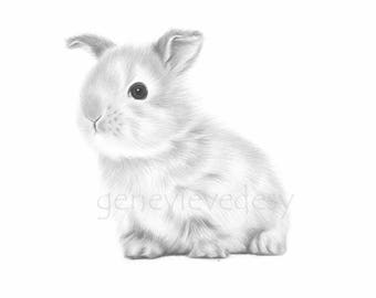 Black and white Bunny Art Print from a pencil drawing - Nursery Art Print - Baby Bunny