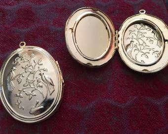 Vintage Goldtone Large Bird Locket & Setting (1)