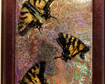 Butterfly Squiggles