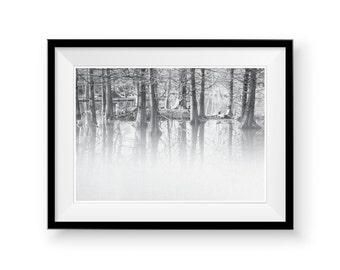 Forest Wall Art Print, Scandinavian Art, Printable Woodland, Monochrome Print, Black and White Reflection , Modern Minimalist , Tree Photo