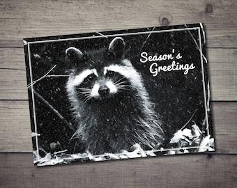 Raccoon Holiday Postcard