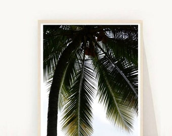 Tropical Art, Palm Tree, Printable Art,  Palm Tree Wall Art, Minimalist Poster, Wall Decor, Digital Download, Wall Art