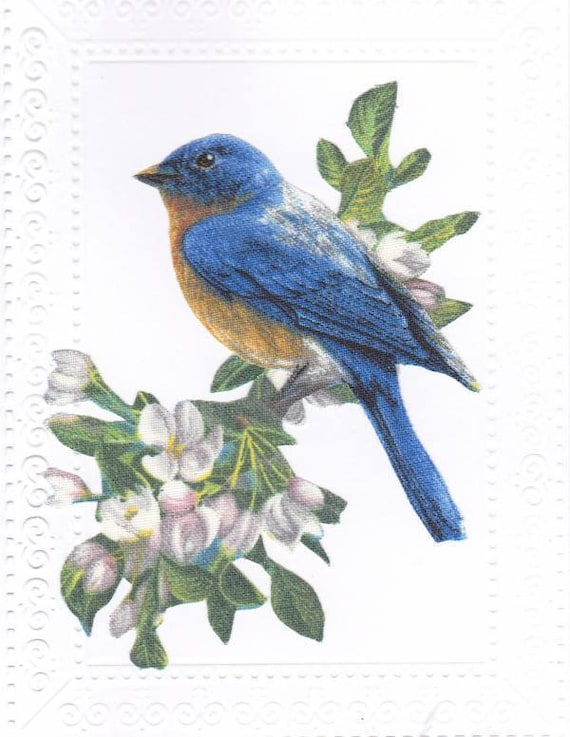 Uplifting bluebird no occasion greeting card with message m4hsunfo