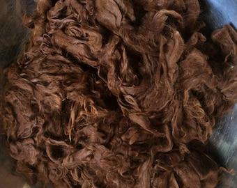 Alpaca Raw Fiber~Washed Suri~Celeste~Medium Brown Suri Fiber