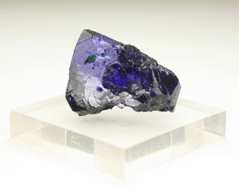 Stunning Milpillas Mine Azurite Crystal on Matrix