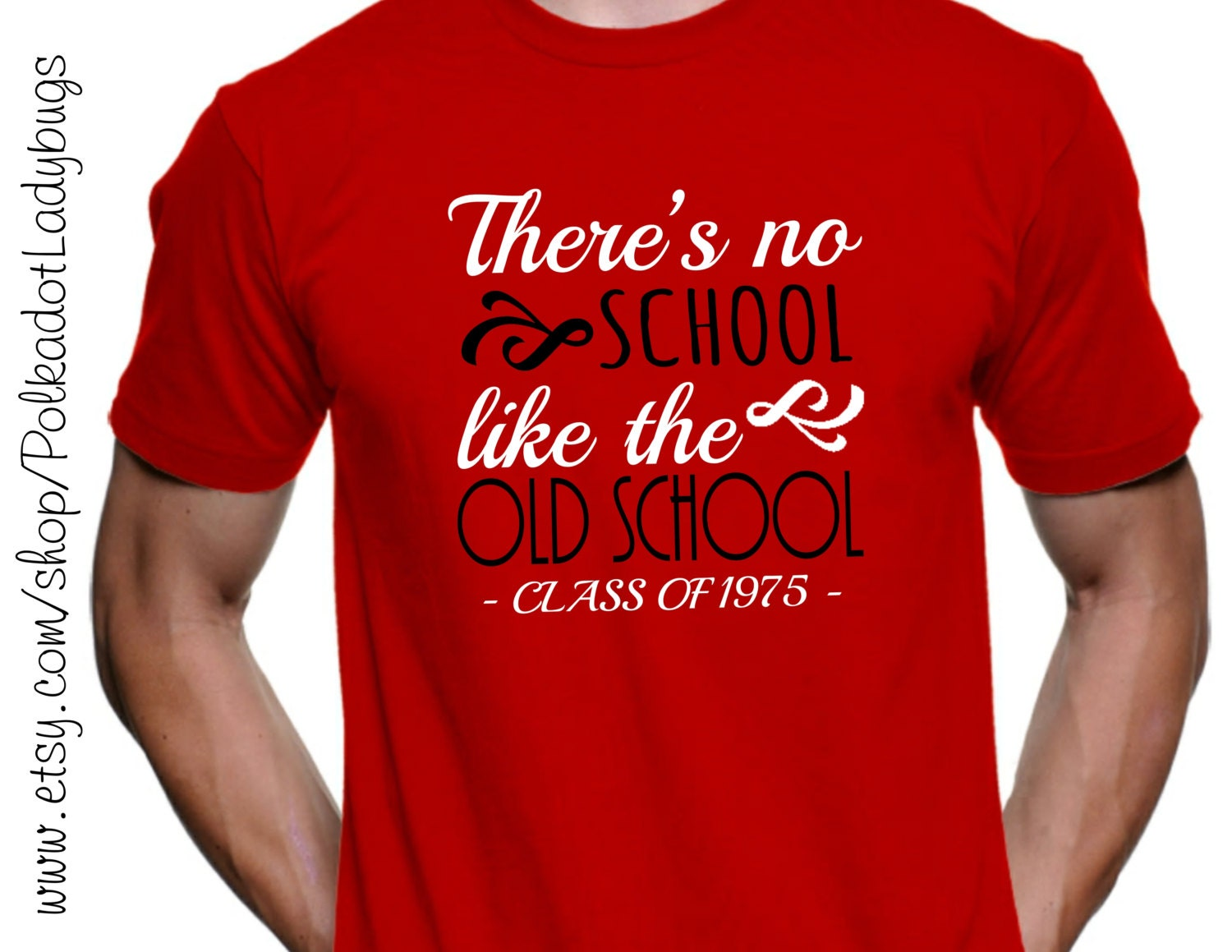 There\'s No School Like The Old School Senior Shirt High