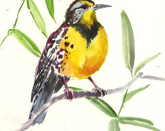 Meadowlark, original watercolor painting, watercolor birds, State birds, bird lover, yellow bird