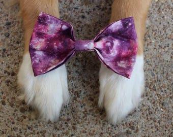 Cosmos | Pet Bow Tie