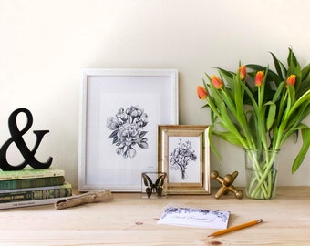 Flower Ink Drawing, Flowers and Buds Art Print #10 - 8x10