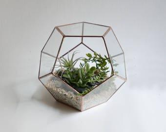Dodechahedron Terrarium