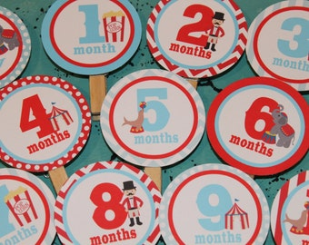 VINTAGE CIRCUS 1st Birthday Photo Clips Banner Newborn - 12 months - Party Packs Available