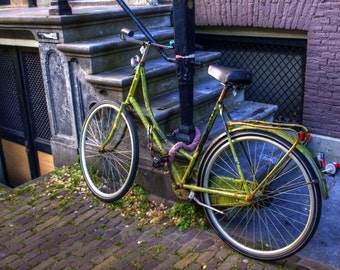 Green Bicycle - Amsterdam