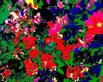 Flowers Poster wall art pop art print on canvas 36X24 digital art colorful photography landscape