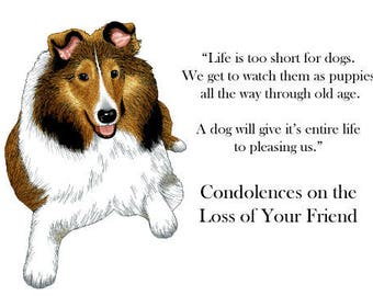 Sympathy Card for the Loss of a Dog, Pet, Puppy Collie