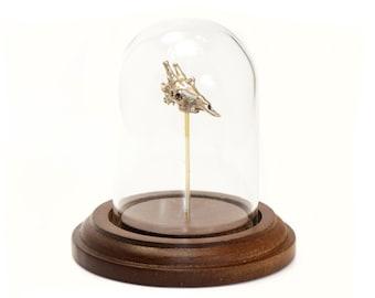 Giraffe Skull - Biology Art - Biologist Gift Science Art Display Bronze - Animal skull