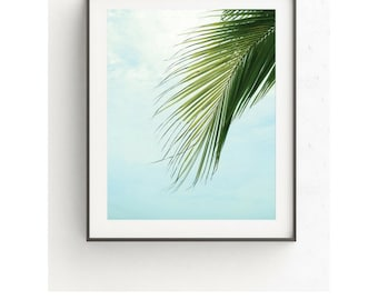 Palm Leaf Print, Tropical Leaf Photo, Palm Tree Print, Tropical Decor, Tropical Leaf Print, Wall Decor, Botanical Art, 8x10, 11x14, Prints