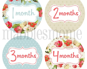 Monthly Baby Girl Stickers Baby Month Stickers, Monthly Bodysuit Sticker, Monthly Stickers Shabby Chic Floral (Rose)