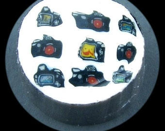 Camera Cluster Glass Murrine Boro Cane 7 grams - 6E