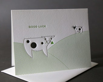Cows Good Luck