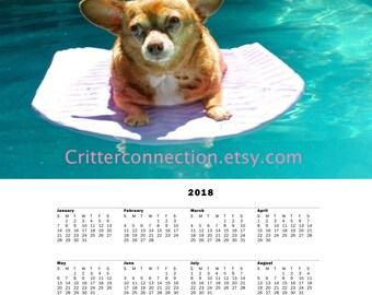 Printable Dog Photo Calendar 2018 / Chihuahua Chill Out Calendar Instant Download