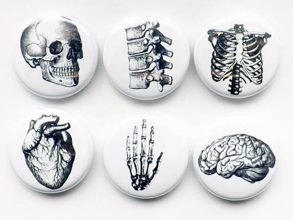 Button Pins Anatomy Brain Skull Anatomical Heart Med Medical Student Gift Stocking Stuffer Party Favor Magnet Teacher Goth Nurse Doctor Grey by Etsy