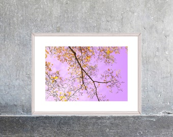 Printable Modern Art, Landscape Photography, Tree Poster, Purple Gold Wall Art, Large Art, Digital Print