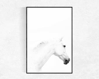 Horse Photography PRINT, Horse Poster, Wall Art, Scandinavian Print, Modern Minimalist, Black & White, Equine Photography, Horse Art Print