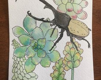 Succulent Beetle - Original 5 x 7 Wetercolor Painting