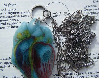 I Heart Anatomy An Anatomical Pendant Necklace