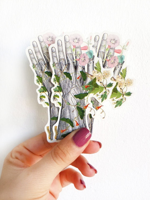 Human hand with flowers, Anatomy stickers , laptop stickers Medical student gift, Anatomical stickers, Mac Book decal STC017