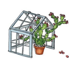 "Prickly Pear, Cactus, Greenhouse, Gardening - Limited Edition Print of a Watercolour and Ink original -  5"" x 7"""