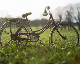 Classic Vintage Bicycle Grass Field Art Print Wall Decor Image Color - Unframed Poster