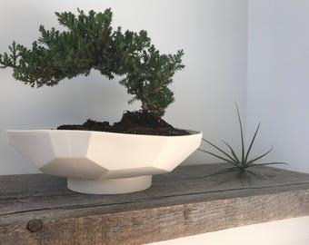 Geo Prism Bonsai Planter