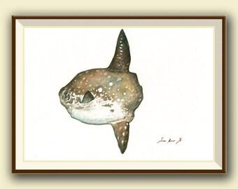 PRINT- Sunfish Mola Mola fish  print -  Sunfish painting art print - Mola mola fish art nursery fishing decor - Art Print by Juan Bosco