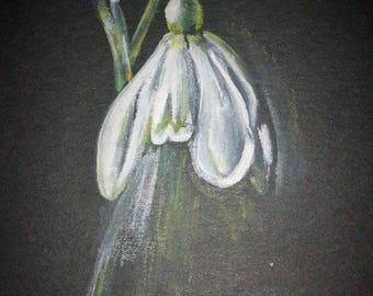 Snowdrop. Handmade, high quality greetings card from my original painting. Blank for your own message.